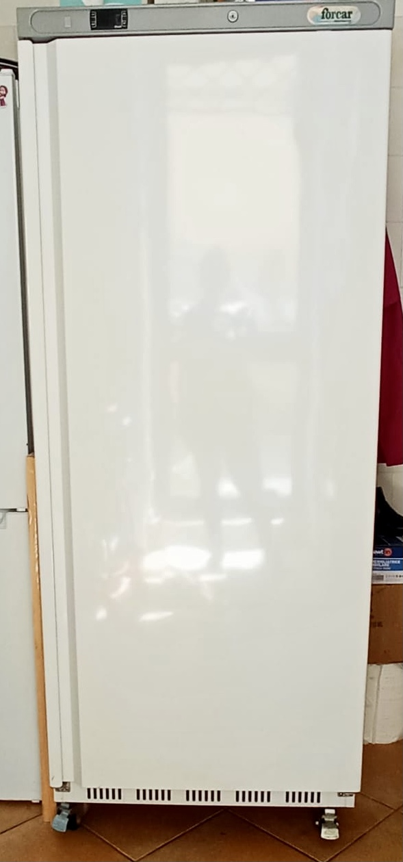 Vendo armadio frigo 700L in vendita - foto 1