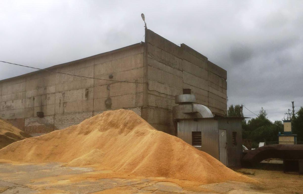 Azienda di produzione di pellet in Russia in vendita - foto 2