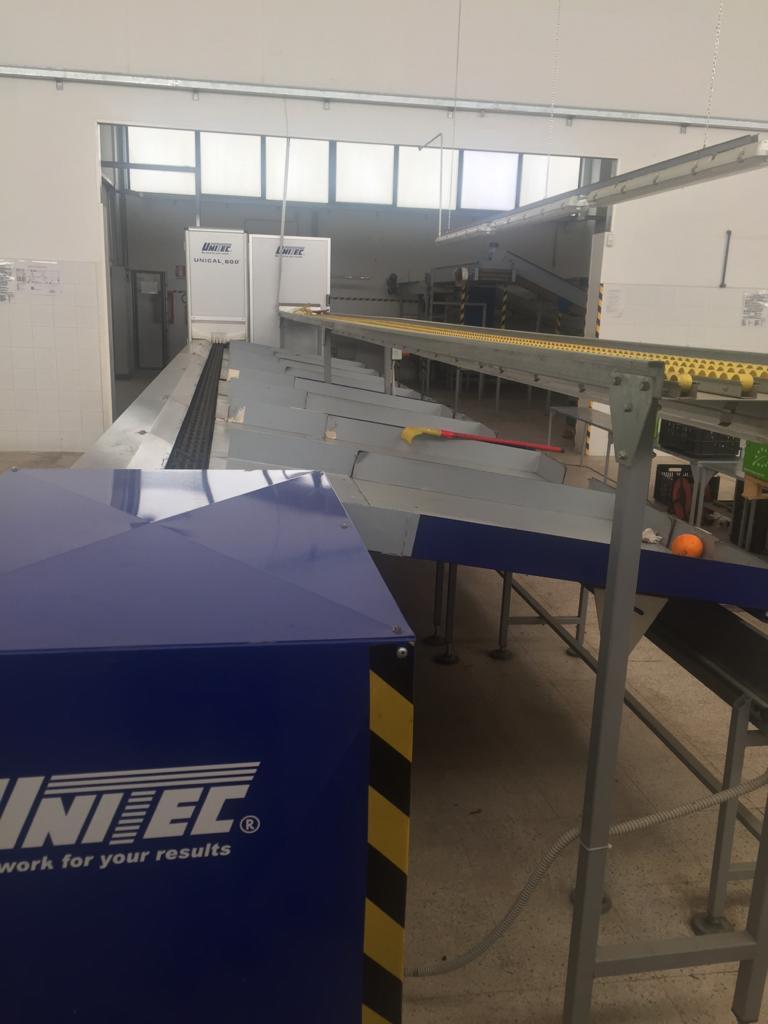 Calibratrice Unical 600 Unitec in vendita - foto 10