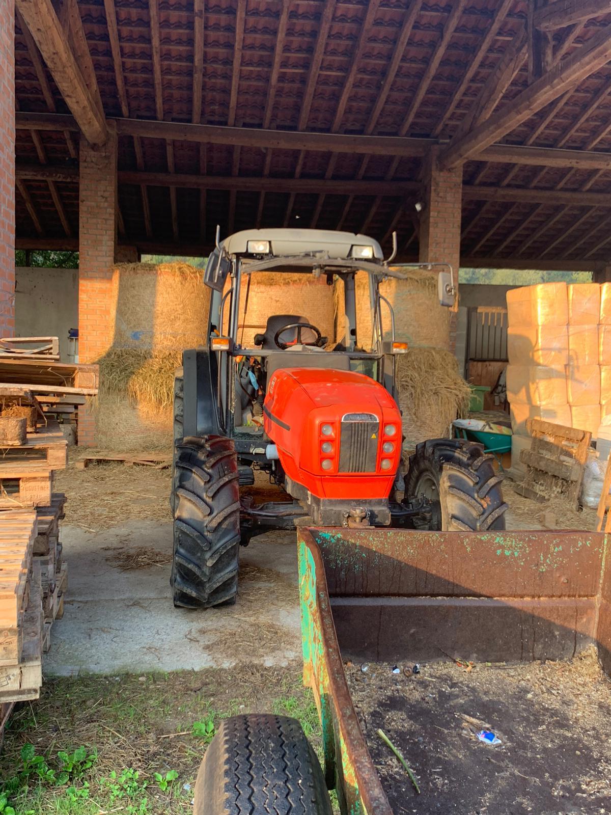 MACCHINARI E ATTREZZATURE AGRICOLE in vendita - foto 6