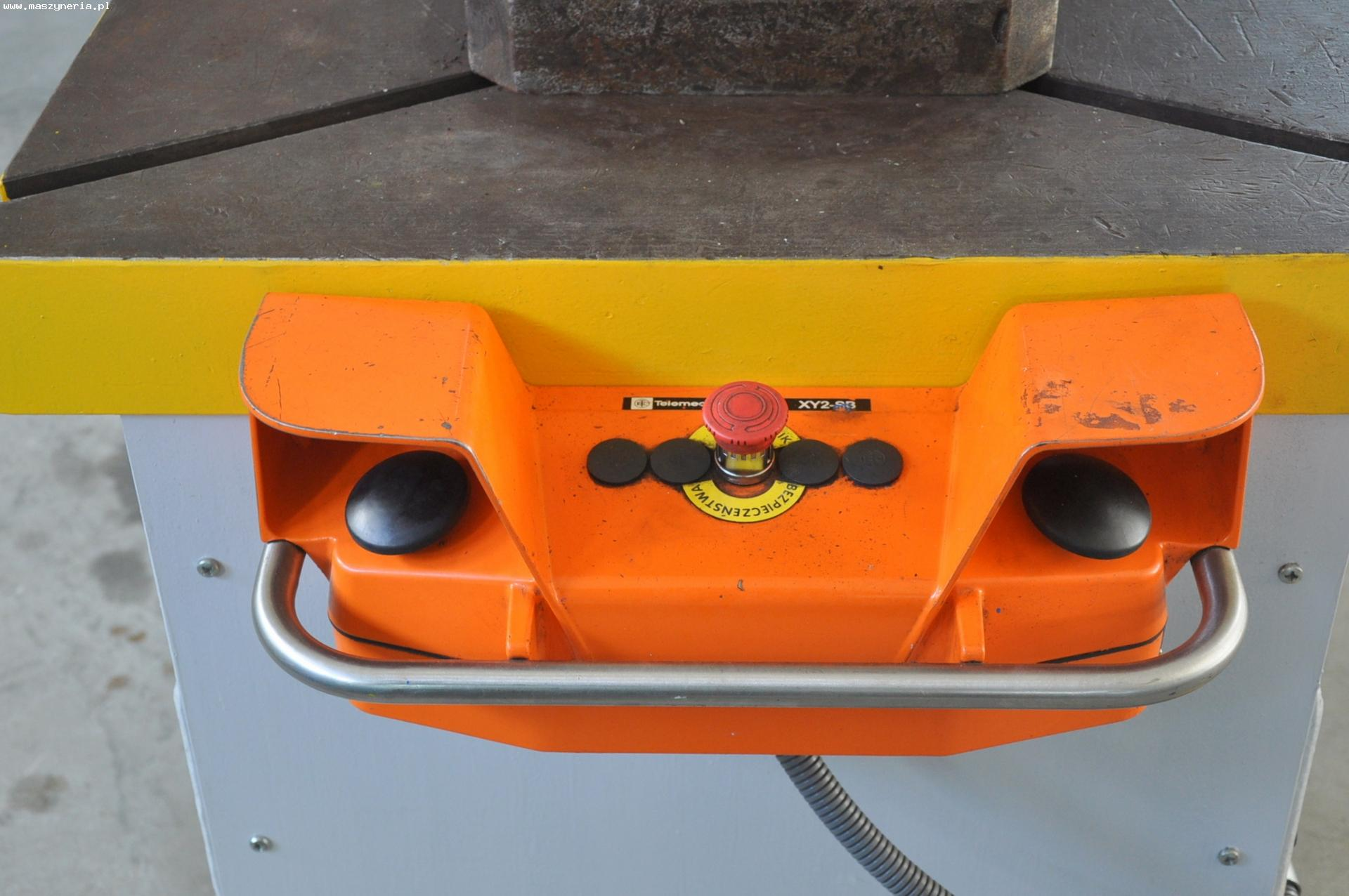 Pressa idraulica WMW ERFURT PYE 63 S1 in vendita - foto 4